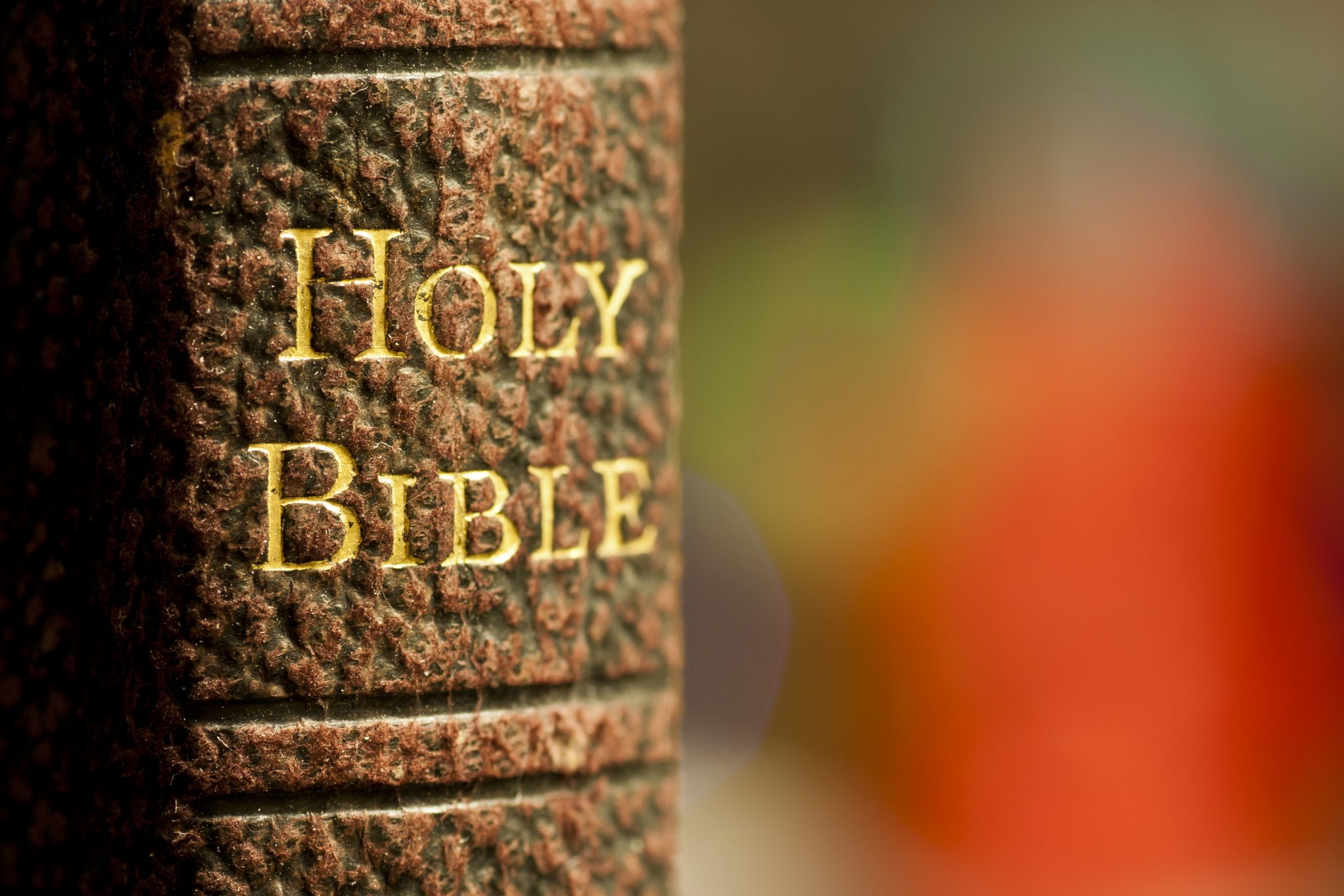 bigstock-Closeup-shot-of-the-holy-bible-21006329